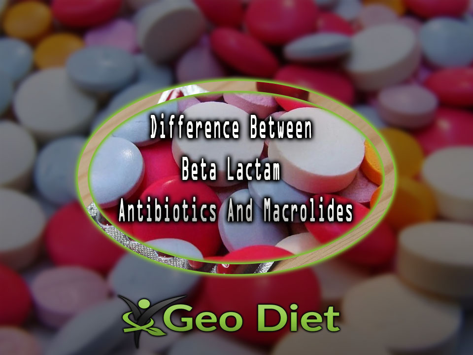 Difference Between Beta Lactam Antibiotics And Macrolides