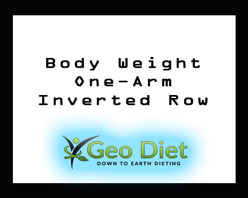 Body Weight One-Arm Inverted Row