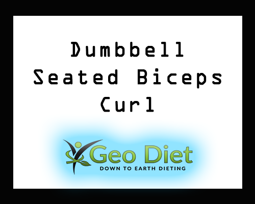 Dumbbell Seated Biceps Curl