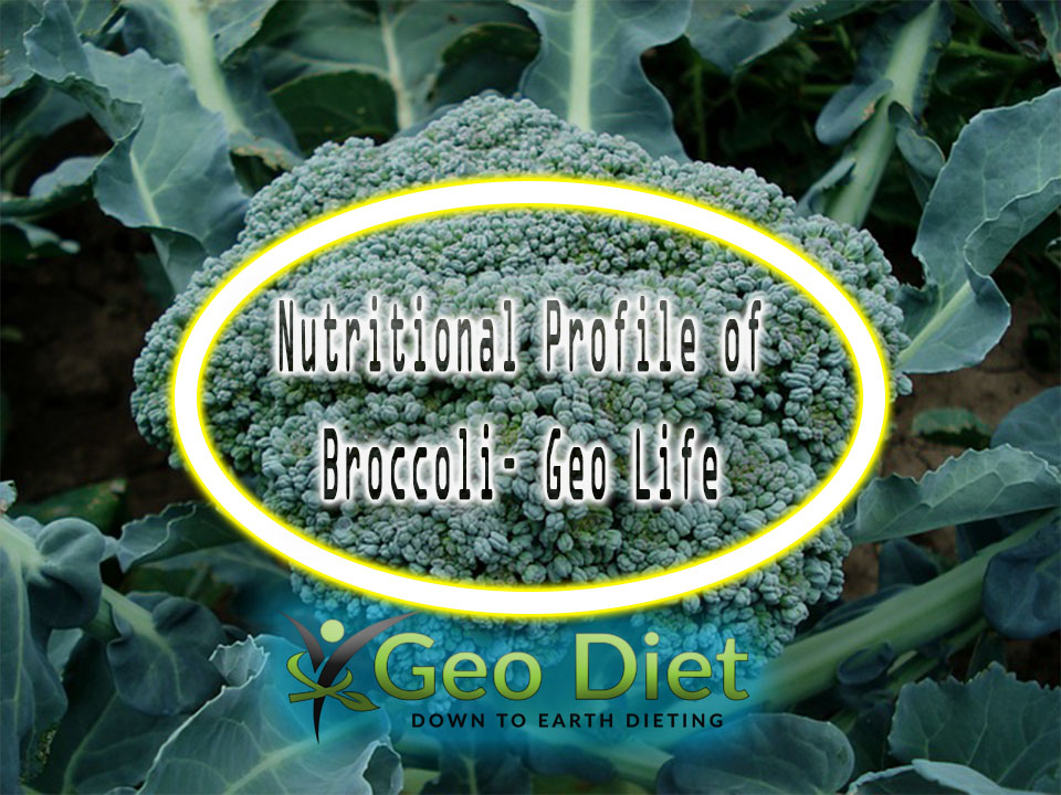 Nutritional Profile of Broccoli– Geo Life