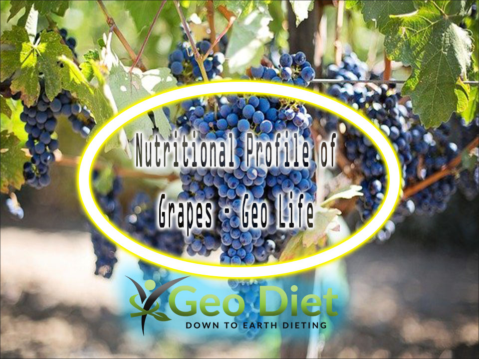 Nutritional Profile of Grapes – Geo Life