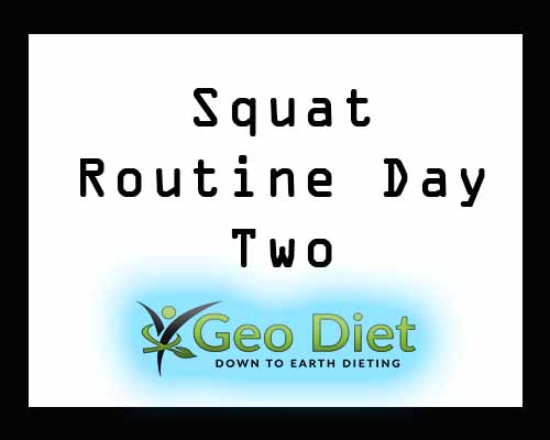 Tuesday Squat Routine Geo Diet Day Two